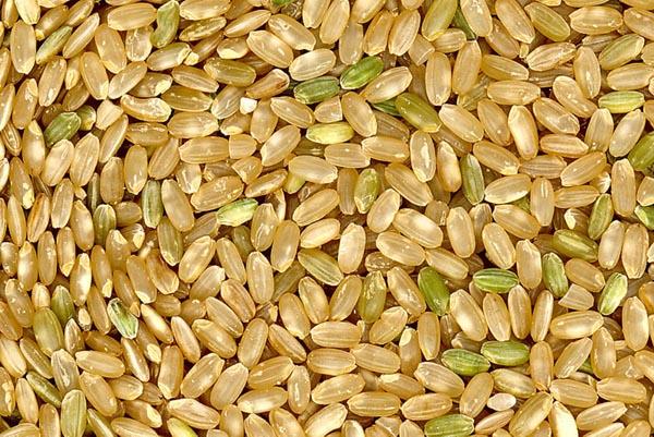 Một loại gạo lứt dùng để nấu rượu