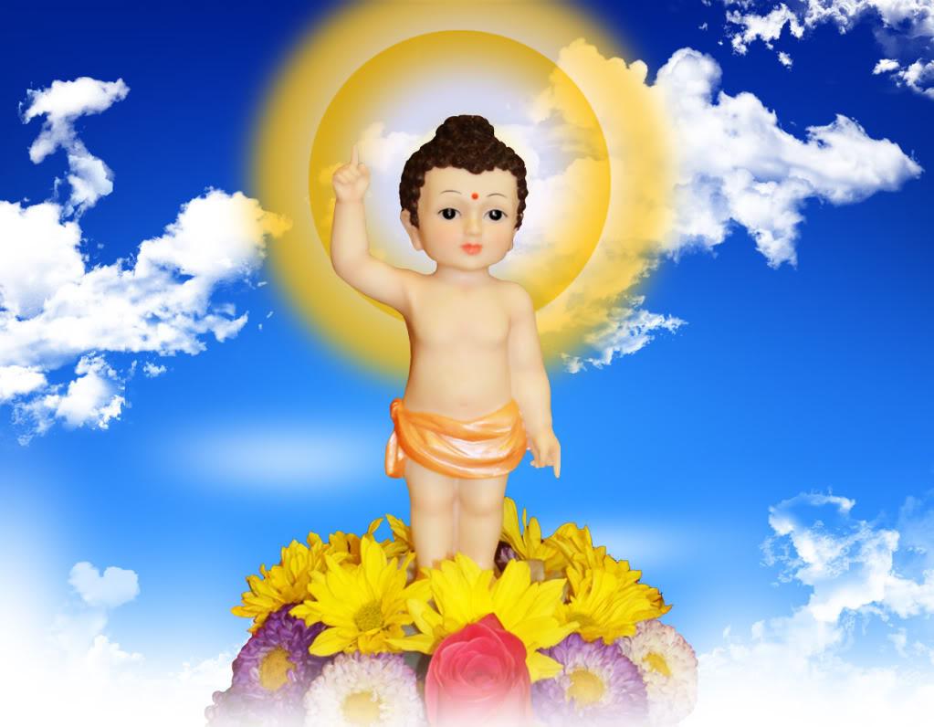 Ý Nghĩa Ngày Phật Đản - Vesak