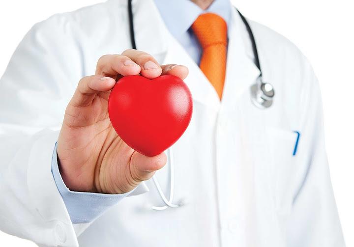 Những cây thuốc nam trị bệnh tim mạch tốt