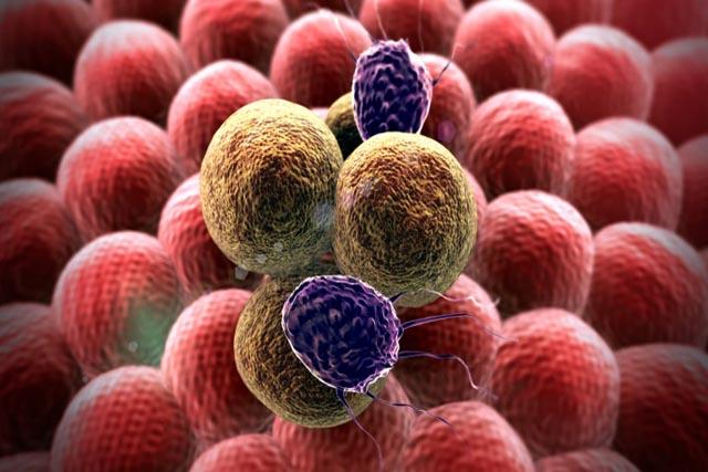 Phương pháp đột phá giúp ngăn chặn hiệu quả tế bào ung thư