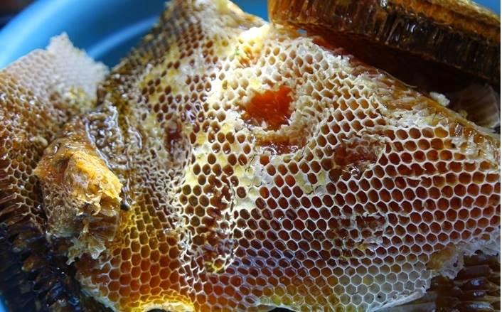 Cách phân biệt mật ong loại tốt và loại thường và mật ong Thật và Giả
