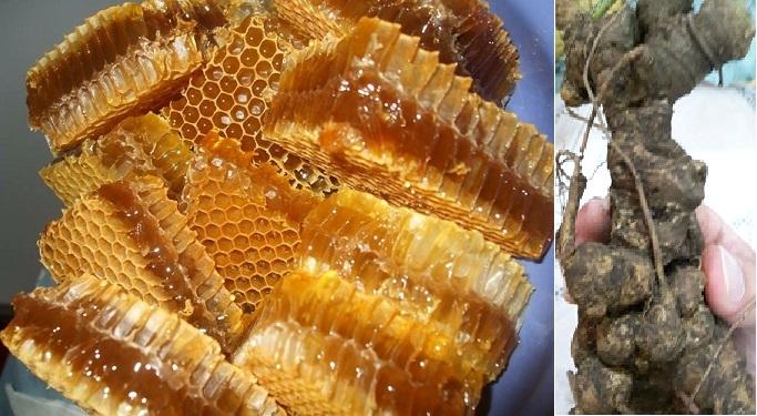 Cách dùng nhân sâm với mật ong