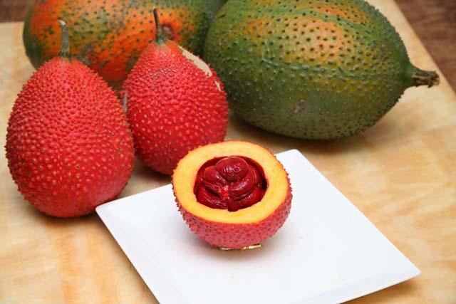 Tác dụng tuyệt vời của trái gấc Việt với bệnh ung thư