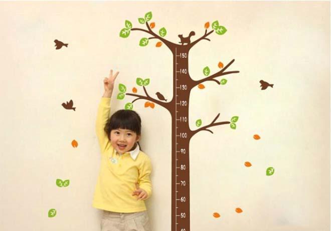 Những thực phẩm nhiều canxi giúp trẻ phát triển chiều cao tốt