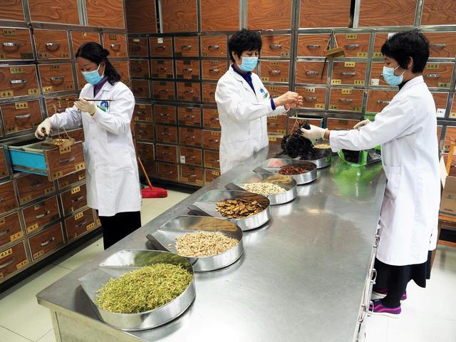 Đông y Việt thời dịch Virus corona