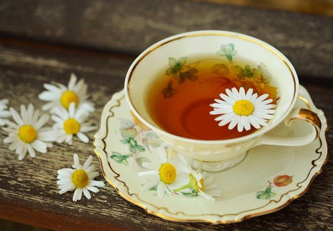 Các loại thảo dược làm trà giải khát và phòng bệnh mùa hè