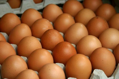 Trứng gà biến đổi gene điều trị ung thư