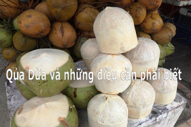 Uống nước Dừa và những điều nhất định phải biết